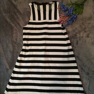 Loft stripped dress